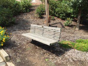 Bushey bench and terrace